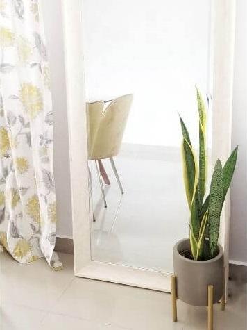 Luchtzuiverende planten in slaapkamer
