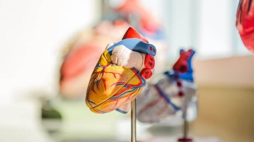 chronisch slaaptekort hartziekten